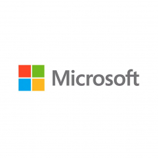MICROSOFT Windows Svr Std 2019 64Bit English 1pk DSP OEI DVD 24 Core [P73-07807/SMI]