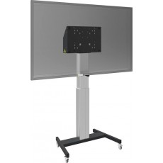 Interactive Flat Panel 65 Inch + Floorstanding Trolley [RP6501K]